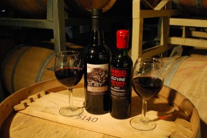 New ports at Revolution Wine